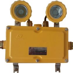 BAJ52-20 Series Explosion-proof Emergency Light FIttings