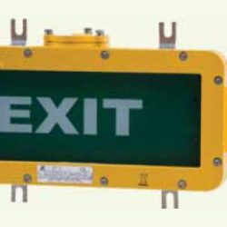 BAYD Series Explosion-proof Emergency Exit Light Fittings